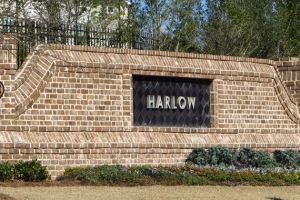Harlow Roswell Townhome Community (30)