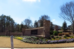 Harlow Roswell Townhome Community (48)