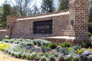 Harlow Roswell Townhome Community (49)