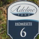 Roswell Neighborhood Of Adeline Pond