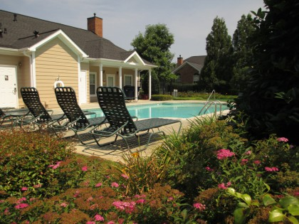 Community Pool Alpharetta Neighborhood